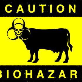 biohazardigil