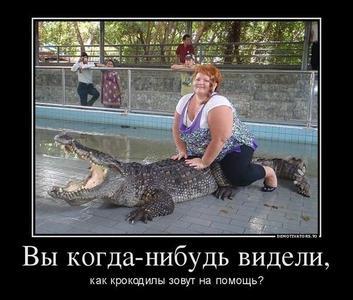 krokodil-zoviot-na-pomoshch-.jpg