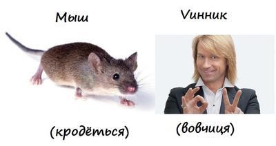 mouse_vinnik.jpg