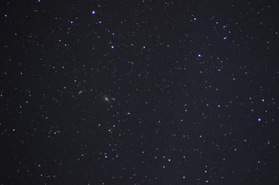1c00182-M81-M82-m1.jpg