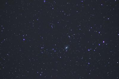 100a00641-M81-M82-NGC3077-2976-2959-IC2574-m.jpg