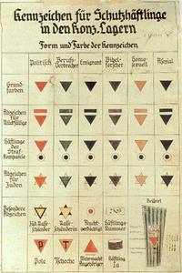 Kennzeichen_fur_Schutzhaftlinge_in_den_Konzentrationslagern.jpg