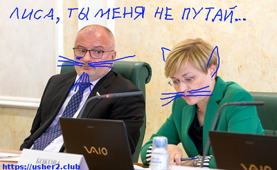 klishas-bokova-senat.png